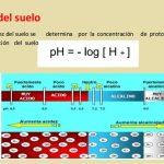 Ph del Suelo, Para que sirve saber el PH, Maneras de analizar
